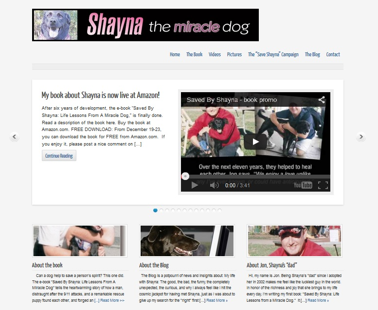 STMD screencap front page