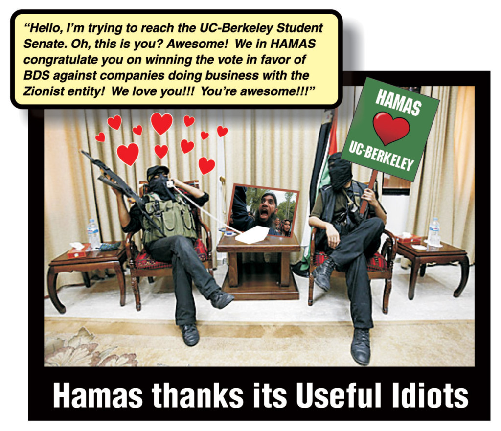 Counter-BDS-Hamas-placard